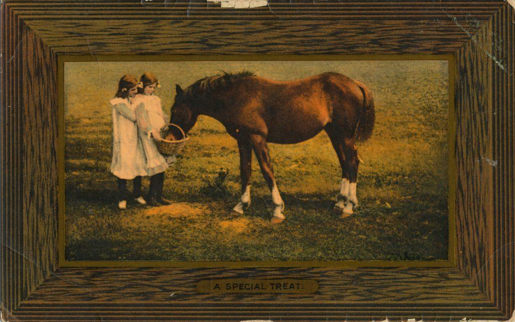馬と二人の少女(Horse and girls)