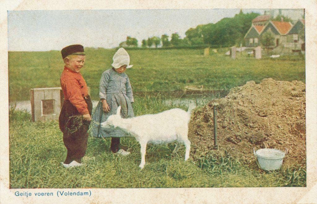 子ヤギと子どもたち(Young goat and children)