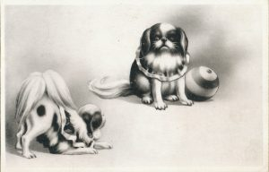 二匹の狆(Two Japanese Spaniels)
