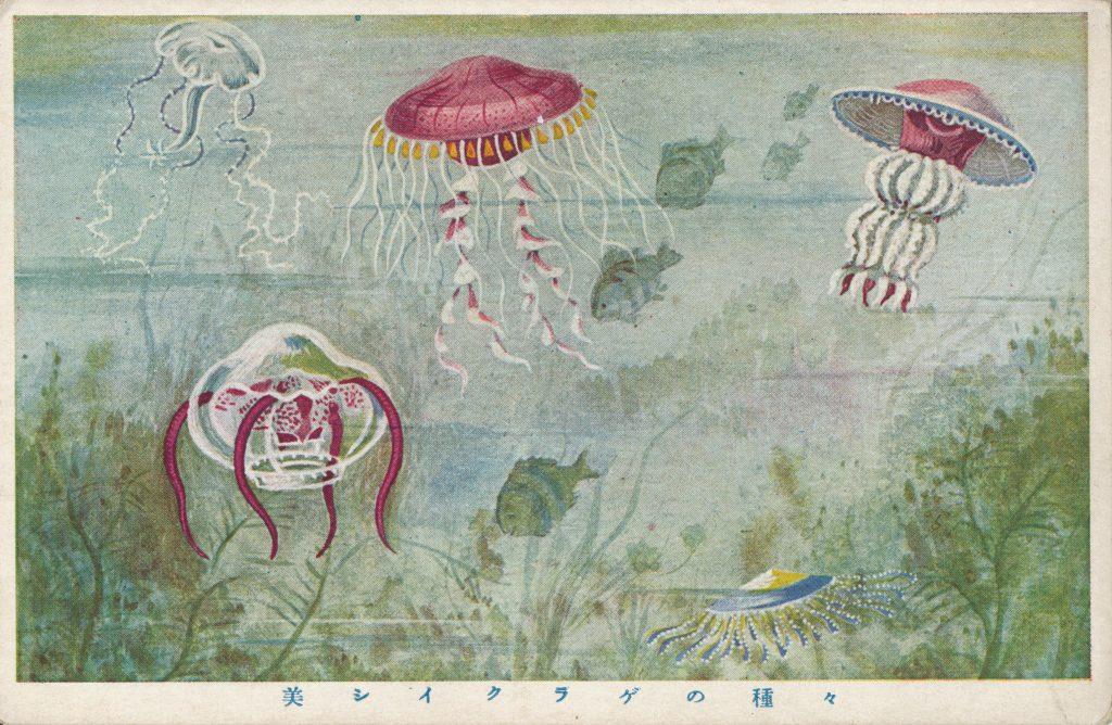 揺蕩うクラゲ(Jellyfish)