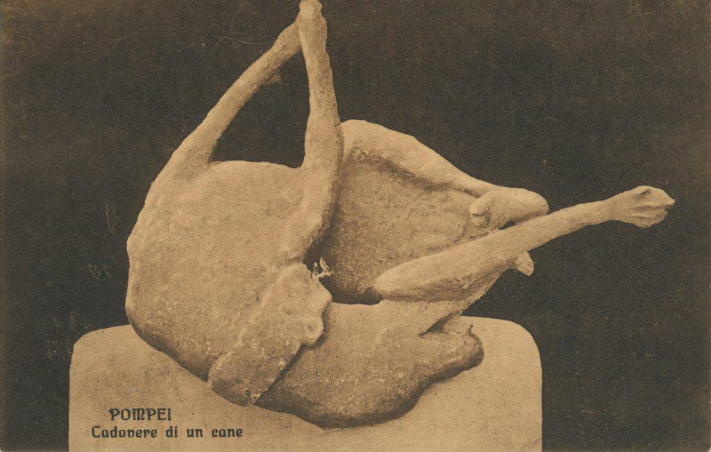 ポンペイ遺跡の犬の石膏像(figure of a dog of Pompeii)