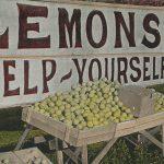 Lemons(レモン) – Free image Vintage postcard