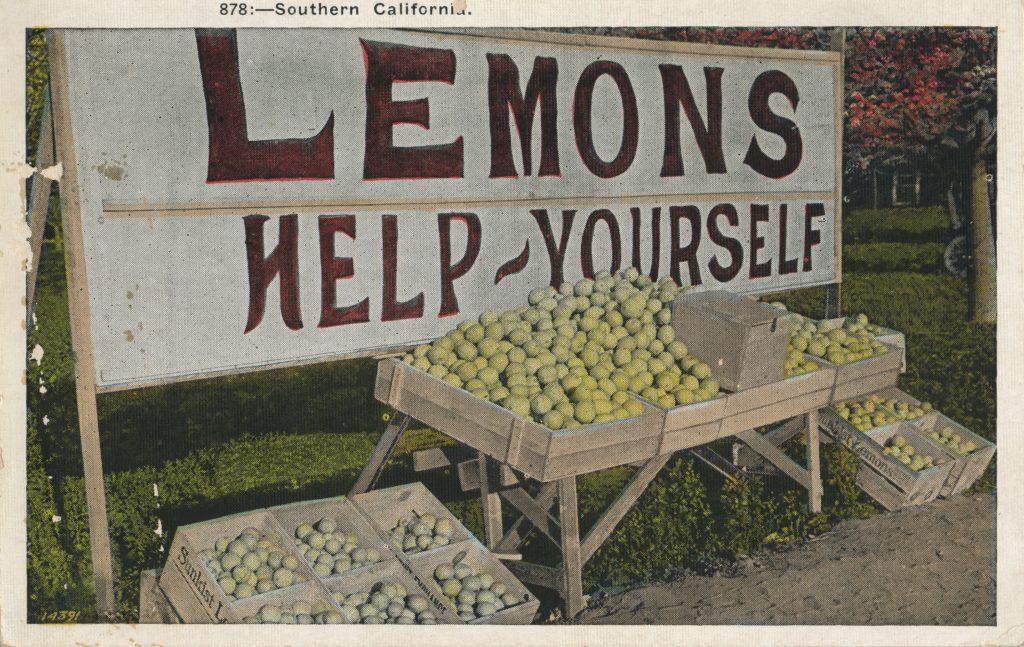 沢山のレモン(A lot of lemons)