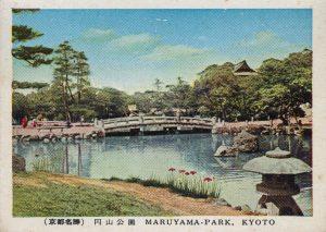 京都の円山公園(Maruyama Park in Kyoto)